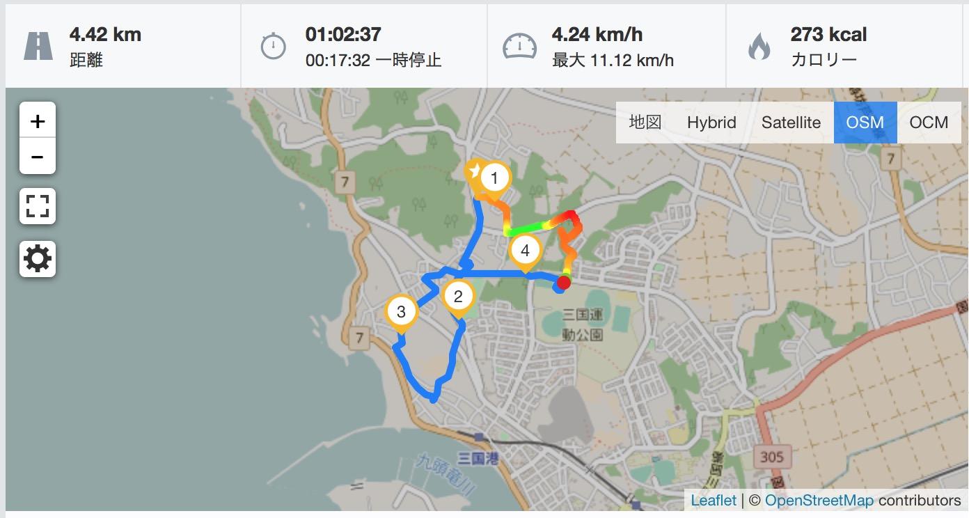 初の1時間ウォーキングはほぼ坂道でした